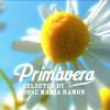 2009 | Primavera selected by JM Ramon