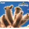 2004 | Flaix FM Zona Oasi 3